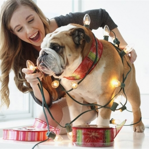 15 unique gifts for dog lovers, pet owners 2018